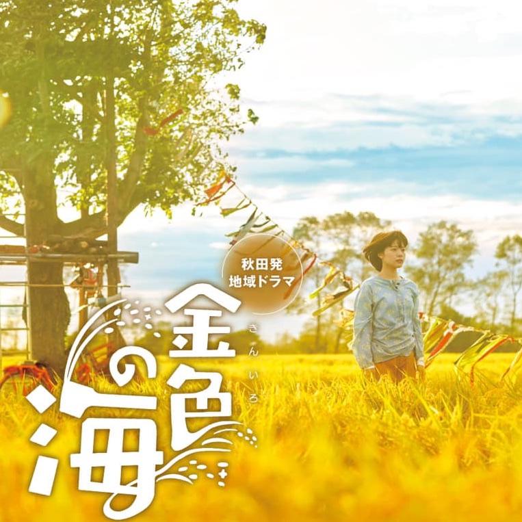 NHKドラマ「金色の海」